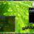 리눅스 민트 7 Gloria 를 깔아봤습니다.